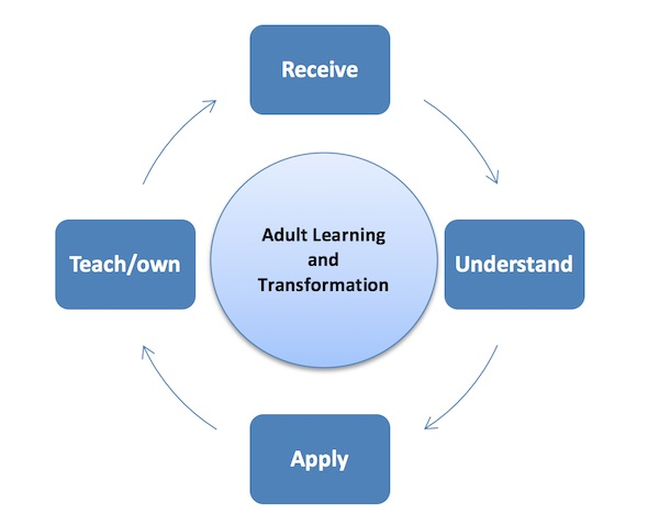 describe the four stages of the transformational learning process